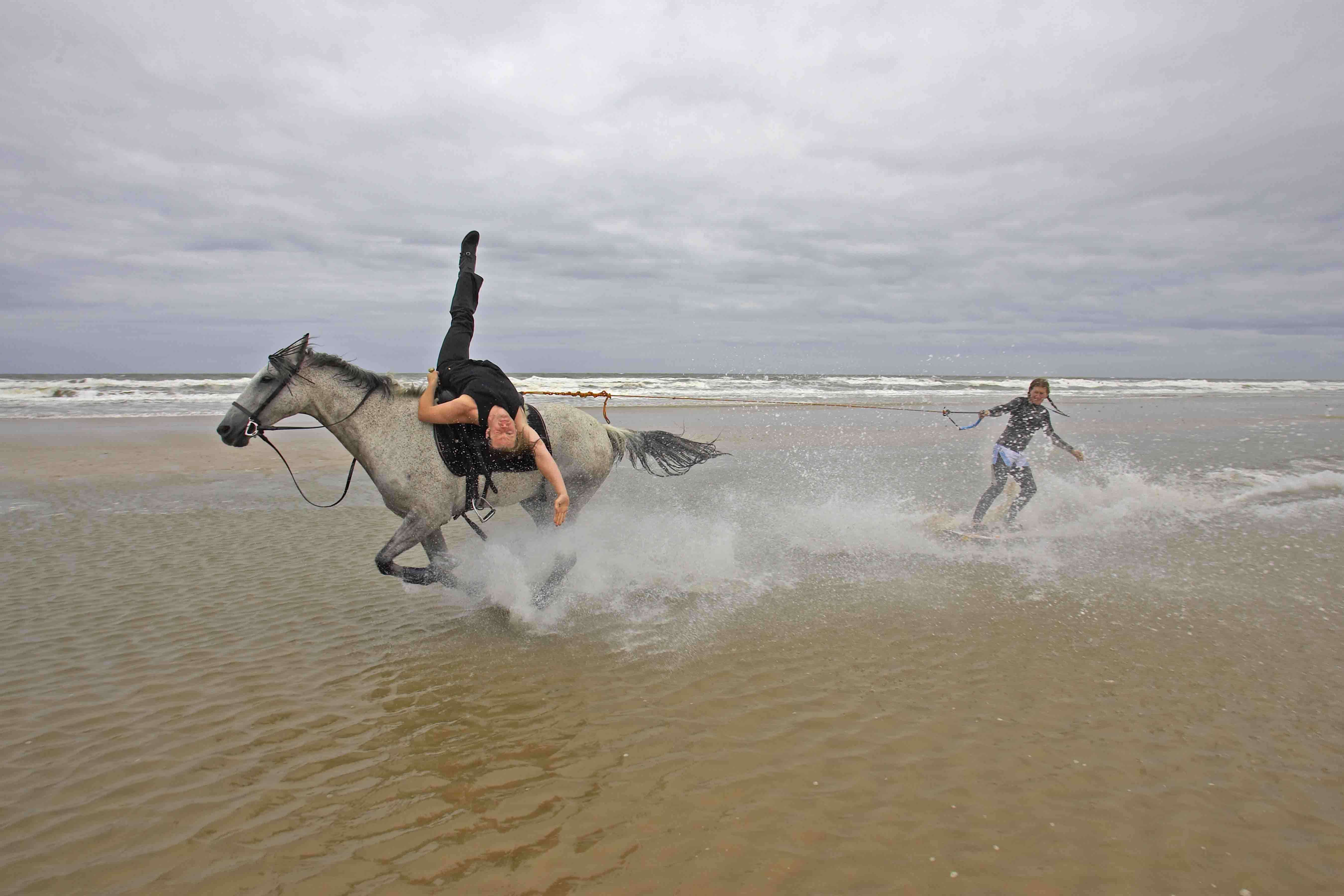 extreme horse surfing and trick riding